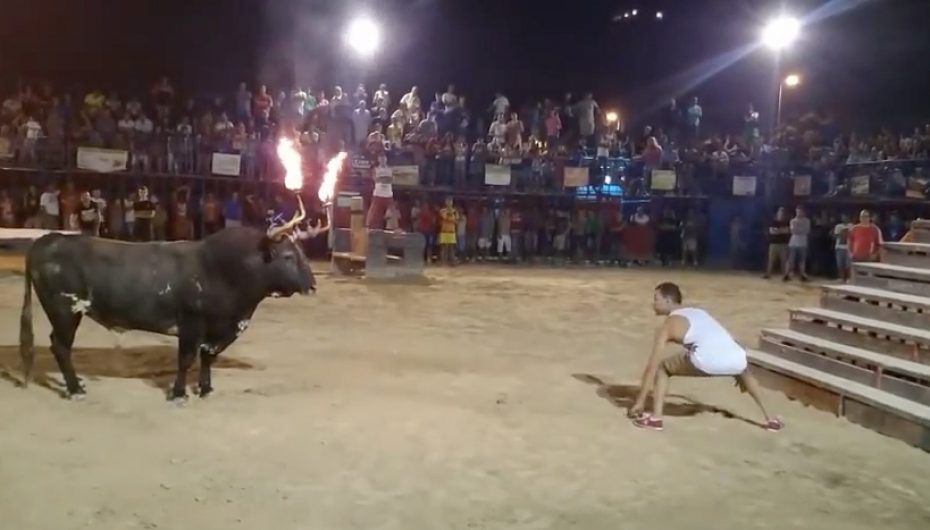 Never Challenge A Bull With It's Horns On Fire
