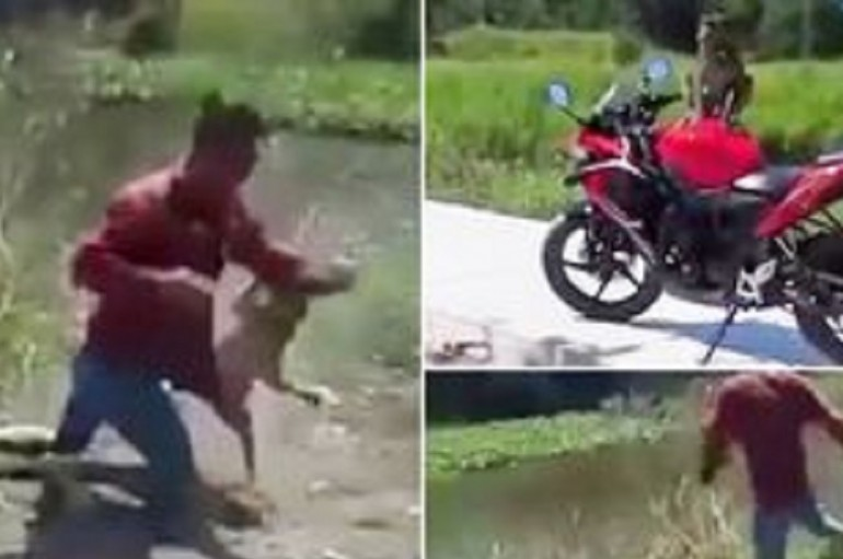 Man Throws Hands With Monkey